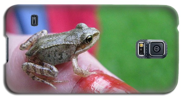 Galaxy S5 Case featuring the photograph Frog The Prince by Ausra Huntington nee Paulauskaite