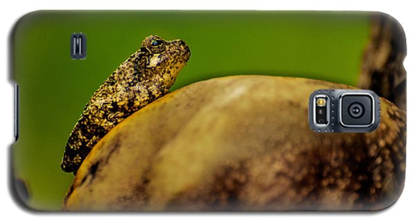 Frog Waits Galaxy S5 Case