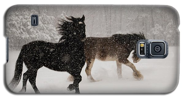 Frolic In The Snow Galaxy S5 Case