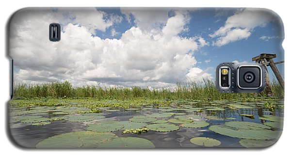From A Frog's Point Of View - Lake Okeechobee Galaxy S5 Case