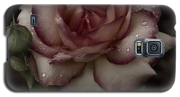 From Me To You Winter Rose Galaxy S5 Case by Barbara Middleton