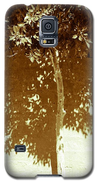 Galaxy S5 Case featuring the photograph From The Plain  by Jez C Self