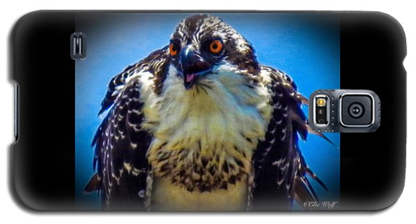 From The Series The Osprey Number 3 Galaxy S5 Case