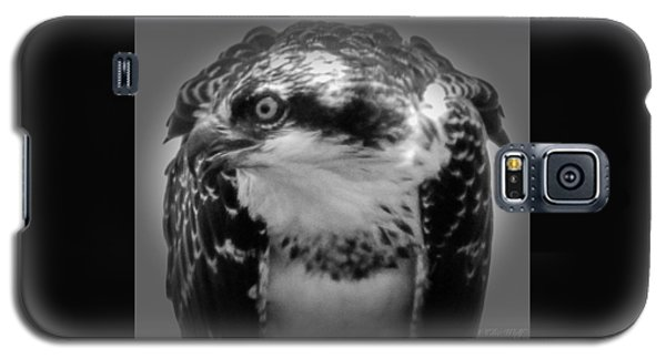 From The Series The Osprey Number Two Galaxy S5 Case