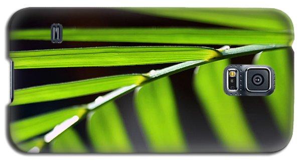 Frond Geometry Galaxy S5 Case