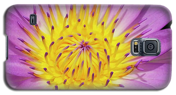 Front And Center Galaxy S5 Case