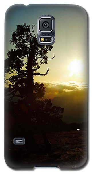 Front Row Seat Galaxy S5 Case by Paul Foutz