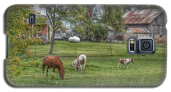 1008 - Front Yard Ponies Galaxy S5 Case