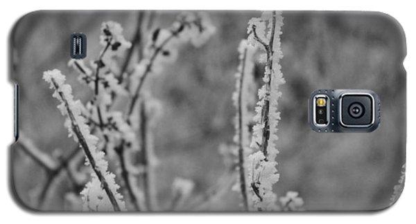 Frost 1 Galaxy S5 Case