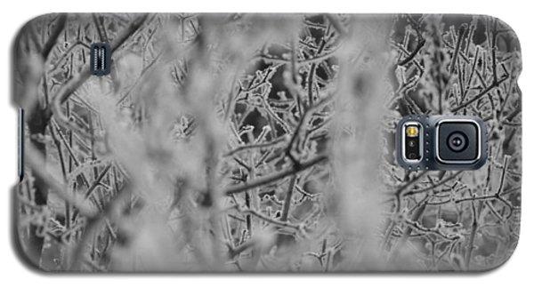 Frost 2 Galaxy S5 Case