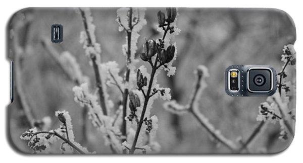 Frost 5 Galaxy S5 Case