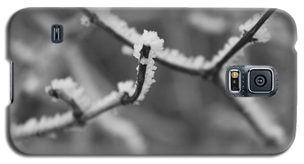 Frost 6 Galaxy S5 Case
