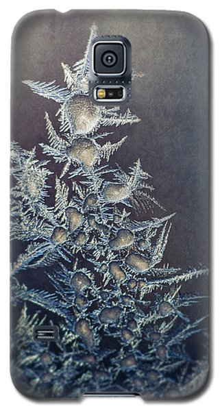Cold Galaxy S5 Case - Frost by Scott Norris