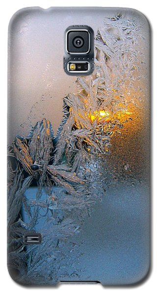 Frost Warning Galaxy S5 Case