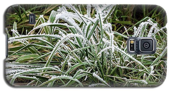 Frosted Grass Galaxy S5 Case