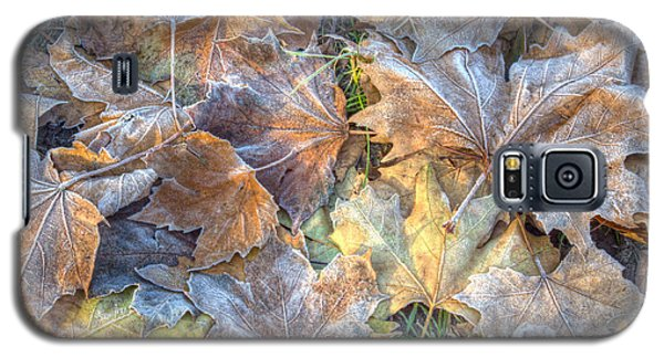Frosted Leaves 8x10 Galaxy S5 Case