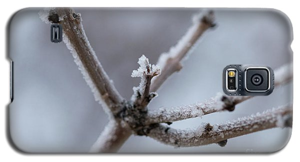 Galaxy S5 Case featuring the photograph Frosted Morning by Ana V Ramirez