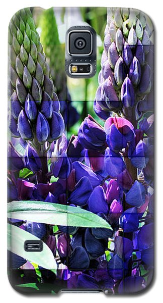 Frosted Purple Lupines Galaxy S5 Case