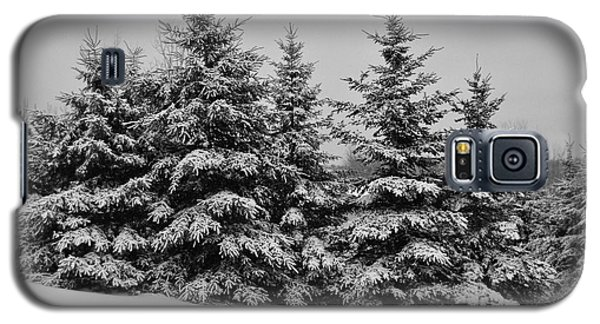 Galaxy S5 Case featuring the photograph Frosted Trees by Kathleen Sartoris