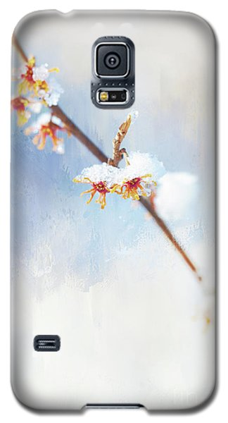 Frosted Witch Hazel Blossoms  Galaxy S5 Case
