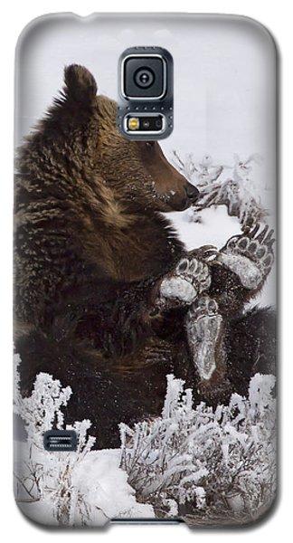 Frosty Feet-signed Galaxy S5 Case