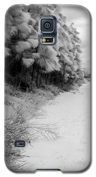 Frosty Treeline Galaxy S5 Case