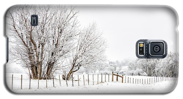 Frosty Winter Scene Galaxy S5 Case