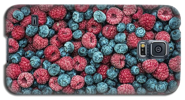 Frozen Berries Galaxy S5 Case by Tim Gainey