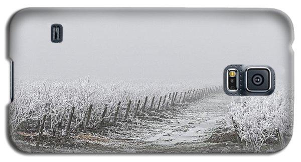Frozen Blueberry Mist Galaxy S5 Case