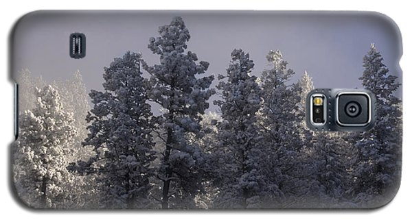 Galaxy S5 Case featuring the photograph Frozen by Ellen Heaverlo