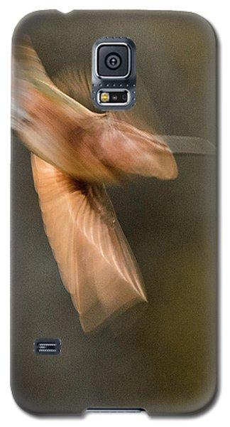 ...frozen Flight Hummingbird.... Galaxy S5 Case