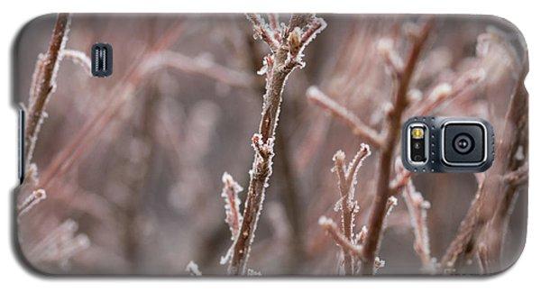 Galaxy S5 Case featuring the photograph Frozen Garden by Ana V Ramirez