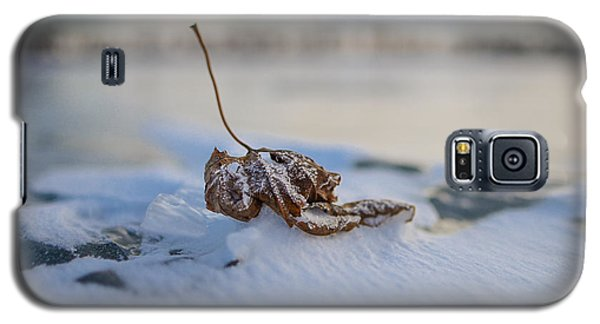Frozen Leaf On Lake Reno Galaxy S5 Case