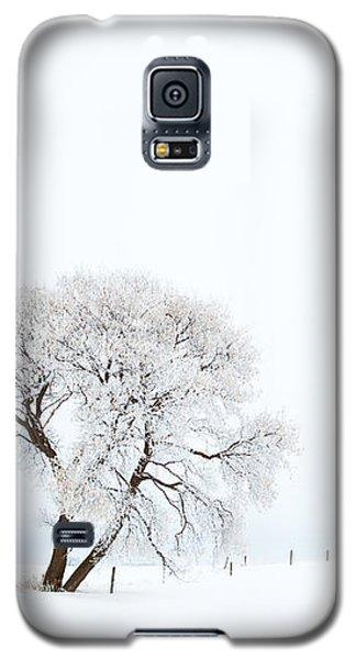 Galaxy S5 Case featuring the photograph Frozen Morning by Yvette Van Teeffelen