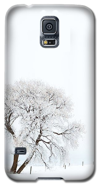 Frozen Morning Galaxy S5 Case by Yvette Van Teeffelen