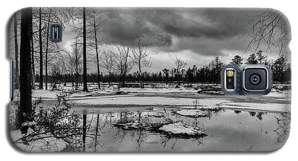 Frozen Mullica River Galaxy S5 Case