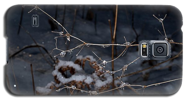 Galaxy S5 Case featuring the photograph Frozen Rain by Annette Berglund