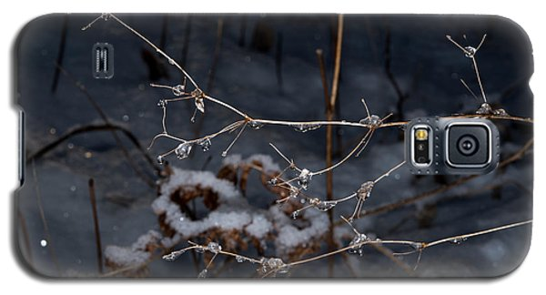 Frozen Rain Galaxy S5 Case by Annette Berglund