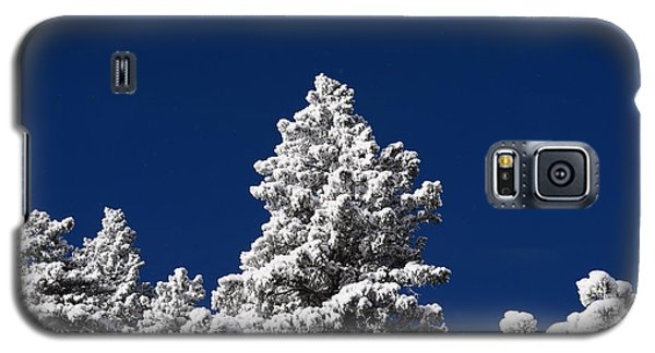 Frozen Tranquility Ute Pass Cos Co Galaxy S5 Case