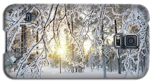 Galaxy S5 Case featuring the photograph Frozen Trees by Delphimages Photo Creations