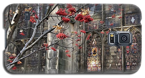 Fruit By The Church Galaxy S5 Case