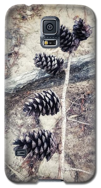 Fruit Of The Pine Galaxy S5 Case