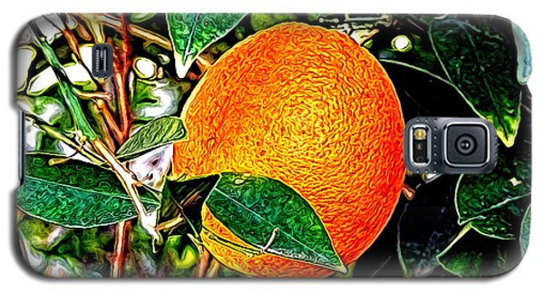 Galaxy S5 Case featuring the photograph Fruit - The Orange by Glenn McCarthy Art