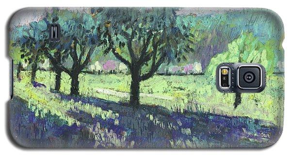 Fruit Trees, Spring Landscape Galaxy S5 Case by Martin Stankewitz