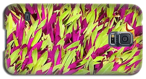 Fuchsia And Green -- Aloha Ground Cover Galaxy S5 Case