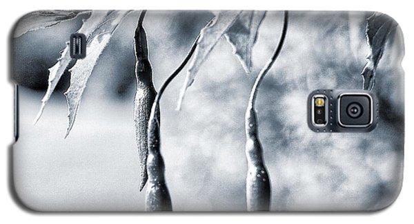 Fuchsia Bud Galaxy S5 Case