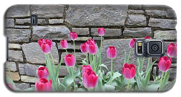 Fuchsia Color Tulips Galaxy S5 Case