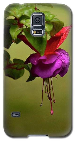 Galaxy S5 Case featuring the photograph Fuchsia Fuchsia by Ann Bridges