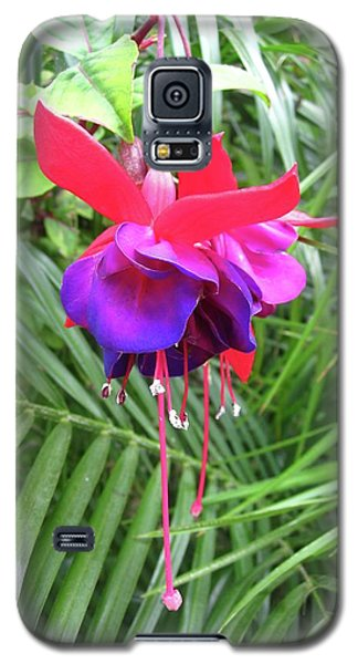 Galaxy S5 Case featuring the photograph Fuchsia by Mary Ellen Frazee