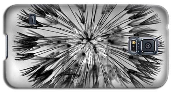 Full Dandy Galaxy S5 Case